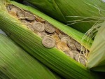 Agri-investment