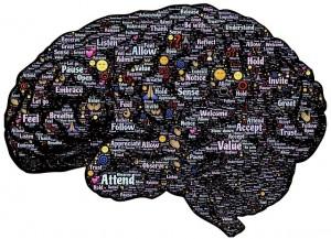 brain-744180_640