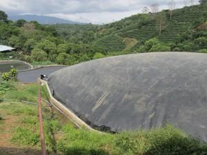 Biodigestor instalado en la granja para convertir desechos en biogas