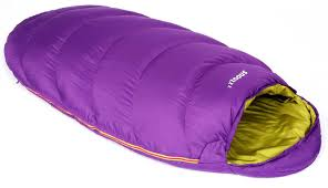 Sleeping Bags Market Outlook, Industry Analysis, Size, Share, Growth and 2025 Forecast