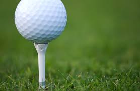 Golf Tees Market 2018 Size, Share Growth, Trend, Industry Analysis and 2025 Forecast Research