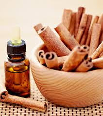 Cinnamon Bark Oil Market 2019 Industry Size, Overview, Industry Analysis, Status and 2025 Forecasts