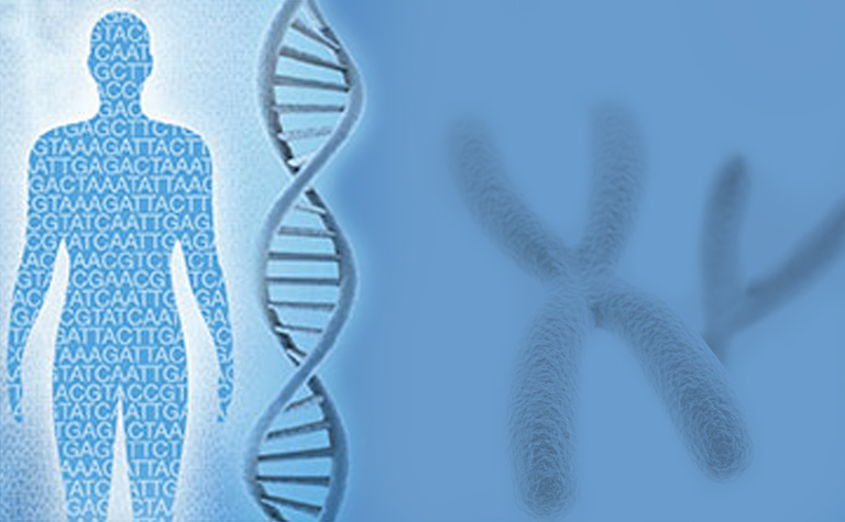Global NGS-based RNA-seq Industry Environment Development Trend & Forecast Report