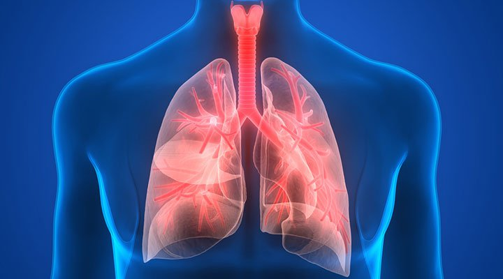 Global Pneumonia Market is Anticipated to Show Growth by 2025