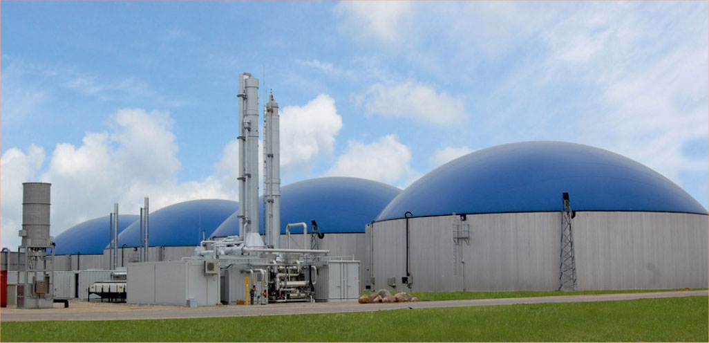 Global Biogas Plant Market Size Growth 2025 Forecast - Planet Market Reports