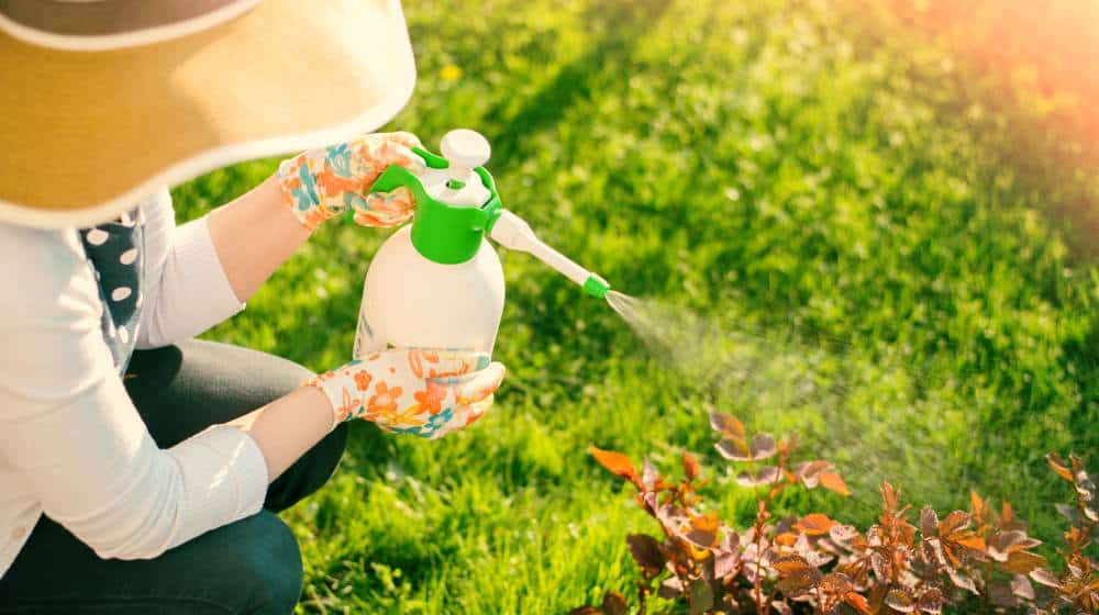 Garden Pesticides Market Modest Situation Among the Top Manufacturers, With Sales, Revenue and Market Share 2024