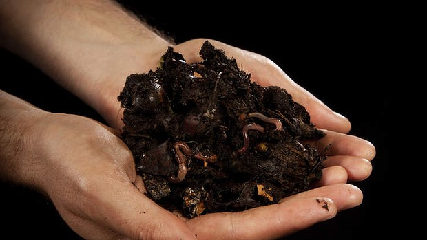 Global Organic Manure Market Report – Industry Size, Share, Trends, Growth And Forecast Till 2023