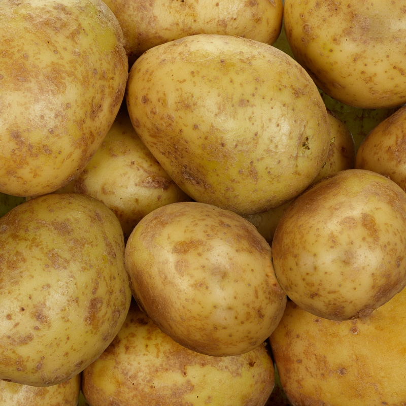Worldwide Potatoes Market Overview with Detailed Analysis, Competitive landscape Forecast to 2023