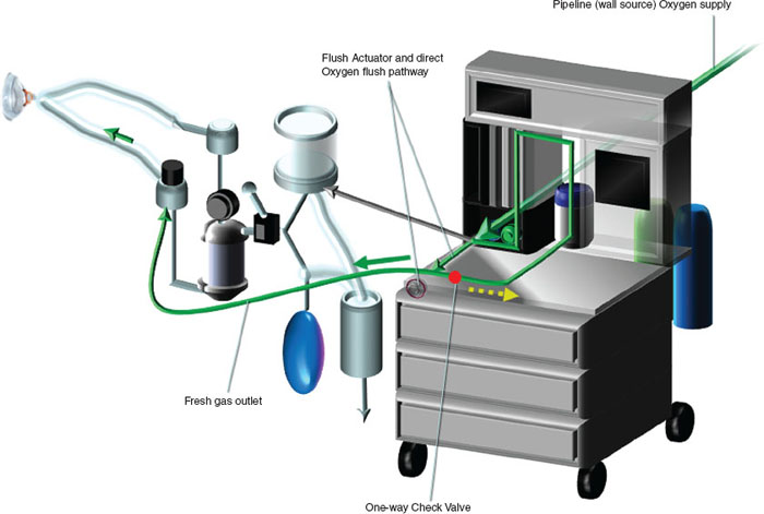 Global Direct Gas Flow Anesthesia Machine Market Size, Share Growth Trend and Forecast 2024