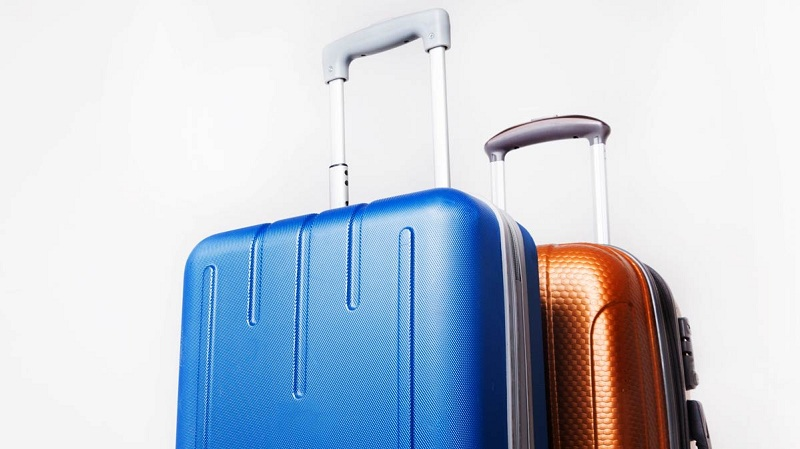 Global Travel Bags Market Size & Share by Material, Luggage Type by PMR