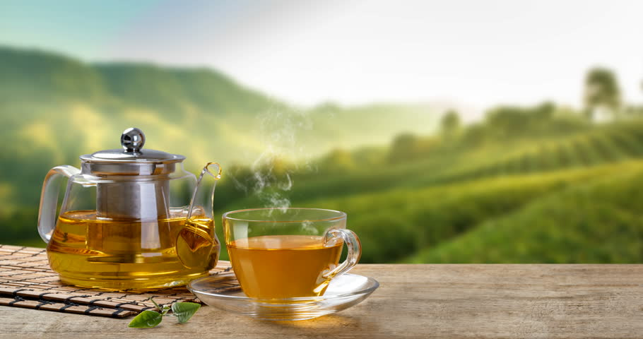 Outdoor Tea Market Size, Industry Analysis, 2019-2024