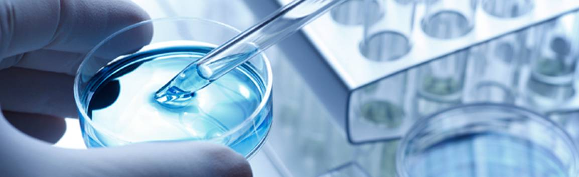 Petri Dishes Market | Global Industry Analysis, Share, Size and Trends