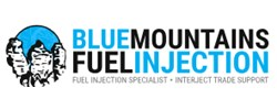 Blue Mountains Fuel Injection - Fuel Cleaning Service