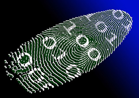 Global Biometrics in Hospitality Market Growth Opportunities 2019-2025, Business Investments with Leading Companies- 3M Cogent, Crossmatch, FUJITSU, M2SYS and more..