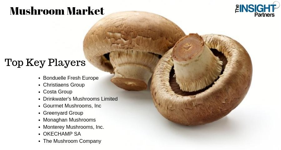 Huge Growth for Mushroom Market by 2019-2027: Top Key Players Gourmet Mushrooms, Inc, Greenyard Group, Monaghan Mushrooms, Monterey Mushrooms, Inc., OKECHAMP SA, The Mushroom Company and Others