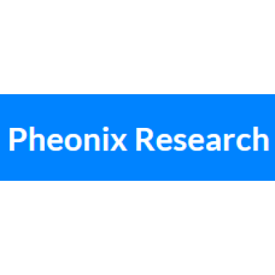 Middle East Artificial Intelligence (AI) Market (2019-2025)-Pheonix Research