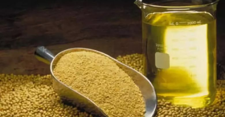 Lecithin and Phospholipids Market 2019 Trends, Demands Values Market research Data and Top Key Players Lipoid GmbH, Sonic Biochem Extractions Ltd., Stern-Wywiol Gruppe GmbH & Co. KG, The Archer Daniels Midland Company, Wilmar International Limited