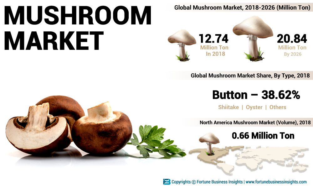 Mushroom Market to Expand Considerably as Mushroom Consumption Reaches 20.84 Million Tons by 2026