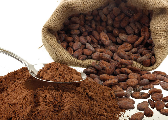 Organic Cocoa Market 2019 – Global Sales,Price,Revenue,Gross Margin and Market Share