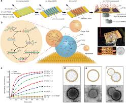 Increasing Demand for Biochips Market to Substantially Surge the Revenues Through the COVID-19 Lockdown Phase and Forecast to 2020