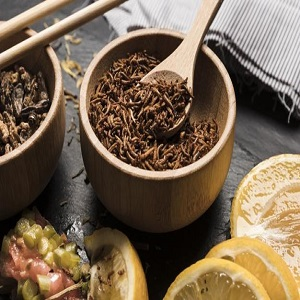 Edible Insects Market: Year 2020-2027 and its detail analysis by focusing on top key players like All Things Bugs, Aspire Food Group, Bitty Foods