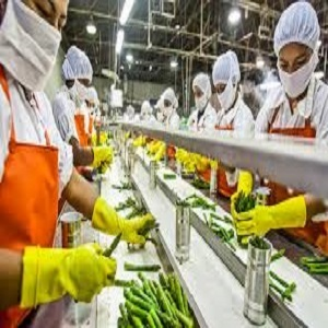 Food Processing Market Growth Sales Revenue Analysis 2020-2026