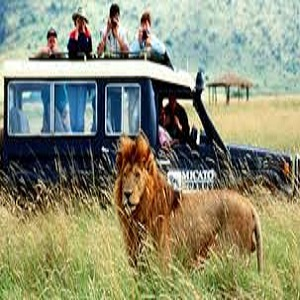Adventure and Safari Market Next Big Thing   Major Giants- Tauck, Al Tayyar, Backroads, Zicasso