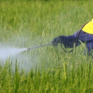 Agrochemical and Pesticide 2020 Market By: Industry Size,Growth,Trends,Analysis,Opportunities, And Forecasts To 2025