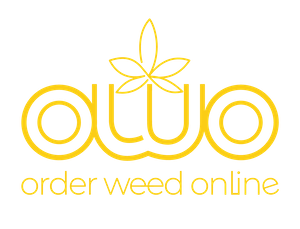 OWO on the status of cannabis after two years of legalization