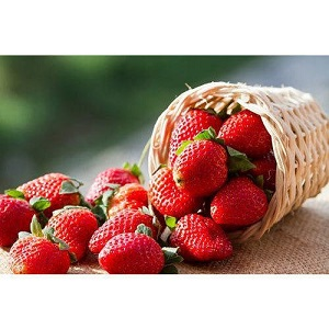 Fresh Strawberry Market Rising Popularity and Emerging Trends | Keelings, Driscoll, Dole Food, Berry Gardens