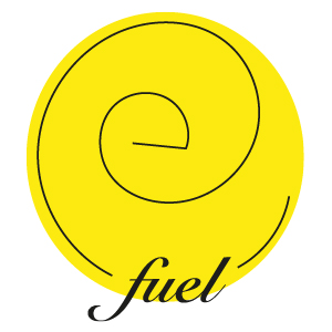 THE eFUEL EFN CORPOR