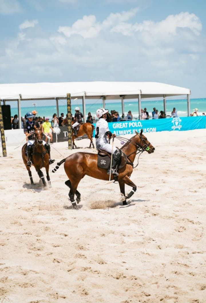 polo ponies 20210501 042535635
