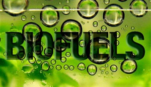 3485 biofuels