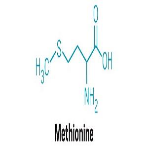 3485 methinione