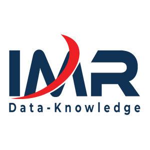 6138 IMR Logo21