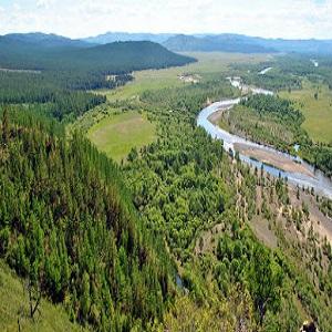 824 1631528382.forest land management market