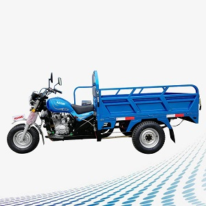 3485 1633527496.india electric three wheeler market