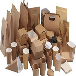 824 1633605637.biodegradable paper plastic packaging market
